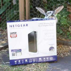 Lulu Reviewing the Netgear N900 WNDR4500 on reviewbunny.co.uk